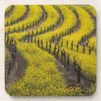 USA, California, Napa Valley, Los Carneros Ava. Beverage Coaster
