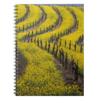 USA, California, Napa Valley, Los Carneros Ava. Spiral Note Book
