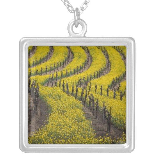USA, California, Napa Valley, Los Carneros Ava. Silver Plated Necklace