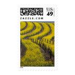 USA, California, Napa Valley, Los Carneros Ava. Stamp