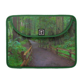 USA, California. Path Among Redwoods Sleeve For MacBooks