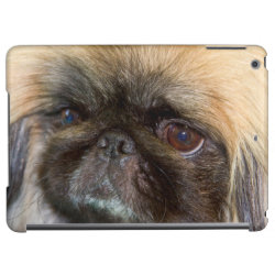 Case Savvy Glossy Finish iPad Air Case with Pekingese Phone Cases design