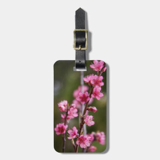 USA, California. Pink Blooms On A Tree Travel Bag Tags