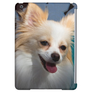 USA, California. Pomeranian Portrait iPad Air Covers