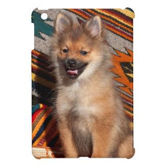 USA, California. Pomeranian Sitting Cover For The iPad Mini