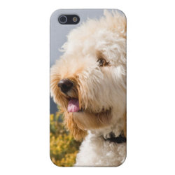 Case Savvy iPhone 5 Matte Finish Case with Labradoodle Phone Cases design