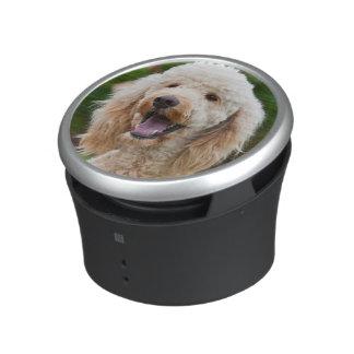 USA, California. Portrait Of Labradoodle Bluetooth Speaker