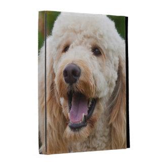 USA, California. Portrait Of Labradoodle iPad Folio Cover