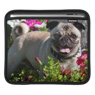USA, California. Pug In Flower Garden Sleeve For iPads