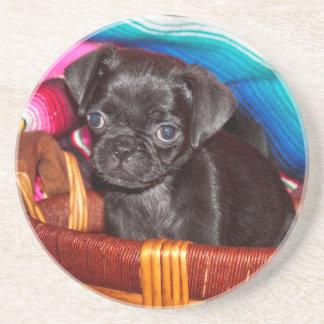 USA, California. Pug Puppy Sitting In Basket Coaster