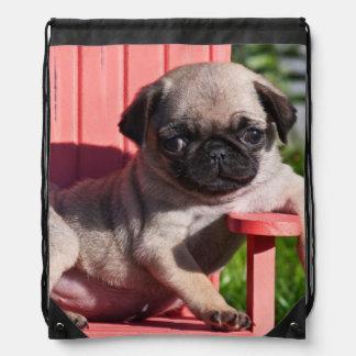USA, California. Pug Puppy Slouching Drawstring Bags