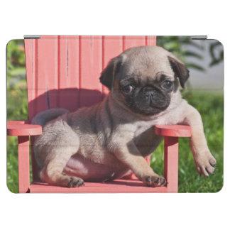 USA, California. Pug Puppy Slouching iPad Air Cover