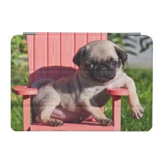 USA, California. Pug Puppy Slouching iPad Mini Cover