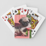 "USA, California. Pug Puppy Slouching Playing Cards<br><div class=""desc"">Zandria Muench Beraldo / DanitaDelimont.com USA,  North America,  California</div>"