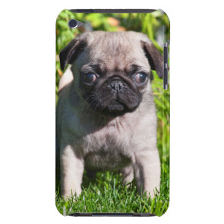 USA, California. Pug Puppy Standing In Grass Barely There iPod Cover