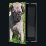 """USA, California. Pug Puppy Standing In Grass iPad Mini Cover<br><div class=""""desc"""">Zandria Muench Beraldo / DanitaDelimont.com USA,  North America,  California</div>"""