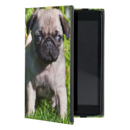 USA, California. Pug Puppy Standing In Grass iPad Mini Cover