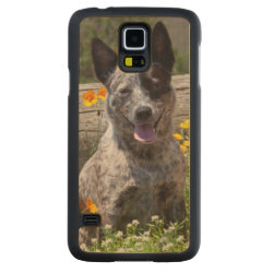 Carved ® Samsung Galaxy S5 Slim Wood Case with Australian Cattle Dog Phone Cases design