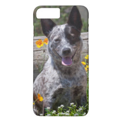 Case-Mate Tough iPhone 7 Plus Case with Australian Cattle Dog Phone Cases design