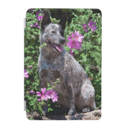 iPad mini Cover with Australian Cattle Dog Phone Cases design