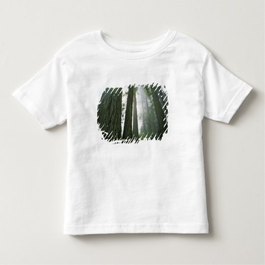 USA, California, Redwood National Park, 2 Toddler T-shirt