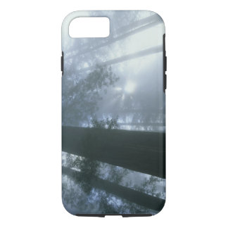 USA, California, Redwood National Park, Del iPhone 7 Case