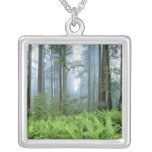 USA, California, Redwood NP. Redwood trees Square Pendant Necklace