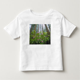 USA, California, Redwood NP. Rhododendron Toddler T-shirt