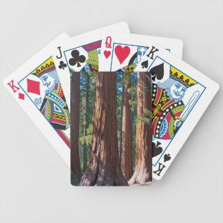 USA, California. Redwood Tree Trunks, Mariposa Bicycle Playing Cards