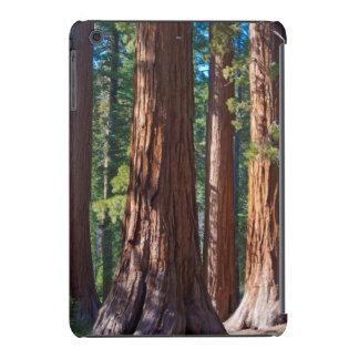 USA, California. Redwood Tree Trunks, Mariposa iPad Mini Retina Cover
