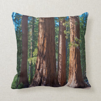 USA, California. Redwood Tree Trunks, Mariposa Throw Pillow