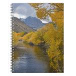 USA, California, River through Eastern Sierra Note Book