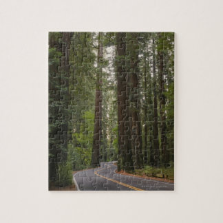USA, California, road through Redwood forest 2 Puzzles