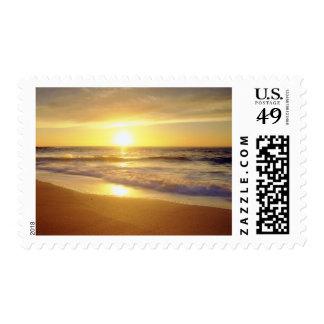 USA, California, San Diego. La Jolla Shores Postage