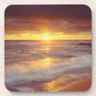 USA, California, San Diego. Sunset Cliffs beach Beverage Coaster