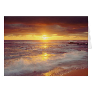 USA, California, San Diego. Sunset Cliffs beach Card