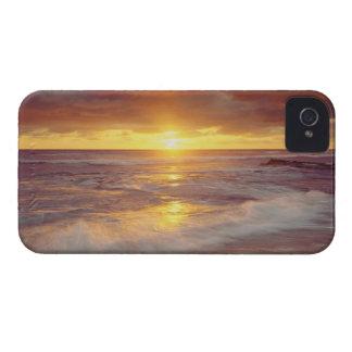 USA California San Diego Sunset Cliffs beach Blackberry Bold Case
