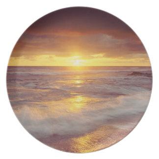 USA, California, San Diego. Sunset Cliffs beach Party Plate
