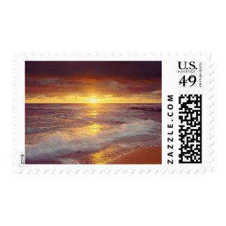 USA, California, San Diego. Sunset Cliffs beach Stamps