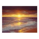 USA, California, San Diego. Sunset Cliffs beach Postcards