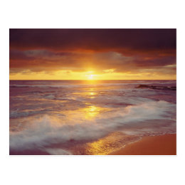 USA, California, San Diego. Sunset Cliffs beach Postcard