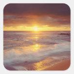 USA, California, San Diego. Sunset Cliffs beach Square Sticker