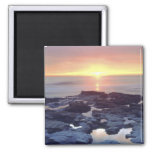USA, California, San Diego. Sunset Cliffs tide 2 Inch Square Magnet