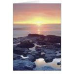 USA, California, San Diego. Sunset Cliffs tide Card