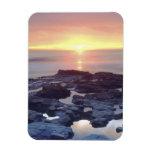 USA, California, San Diego. Sunset Cliffs tide Magnets