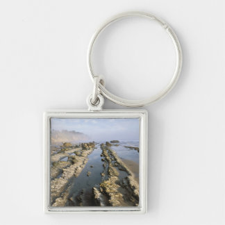 USA, California, Santa Barbara, Henry's Beach. Keychain