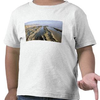 USA, California, Santa Barbara, Henry's Beach. T-shirt
