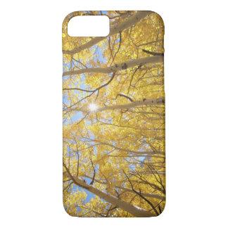 USA, California, Sierra Nevada Mountains. Fall iPhone 8/7 Case