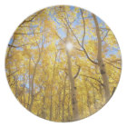 USA, California, Sierra Nevada Mountains. Fall Melamine Plate