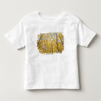 USA, California, Sierra Nevada Mountains. Fall Toddler T-shirt